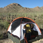 Boy in tent in saguaro forrest