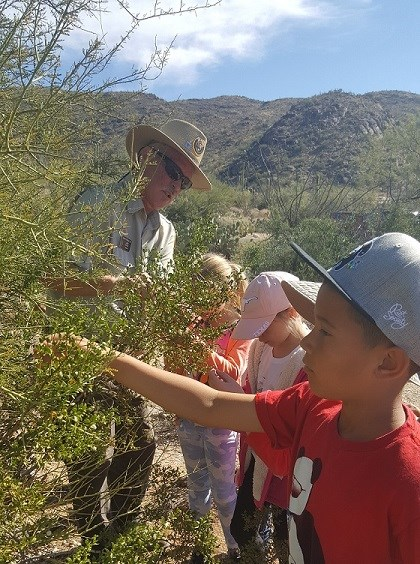 Volunteer Ranger observes plant with students.