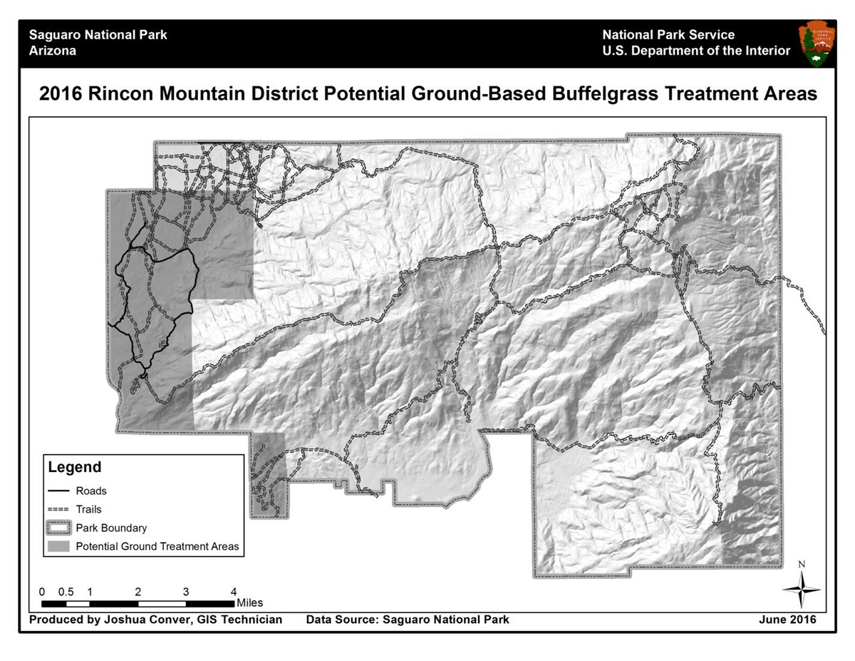 2016 Rincon Mountain District Potential Ground-Based Buffelgrass Treatment Areas