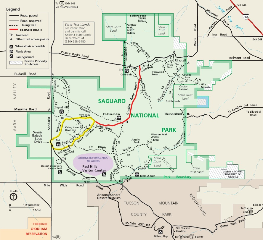 Road Closures May Impact Visitors to Saguaro National Park Over the