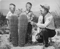 Historic photo of a ranger squatting next to two saguaros with two children.