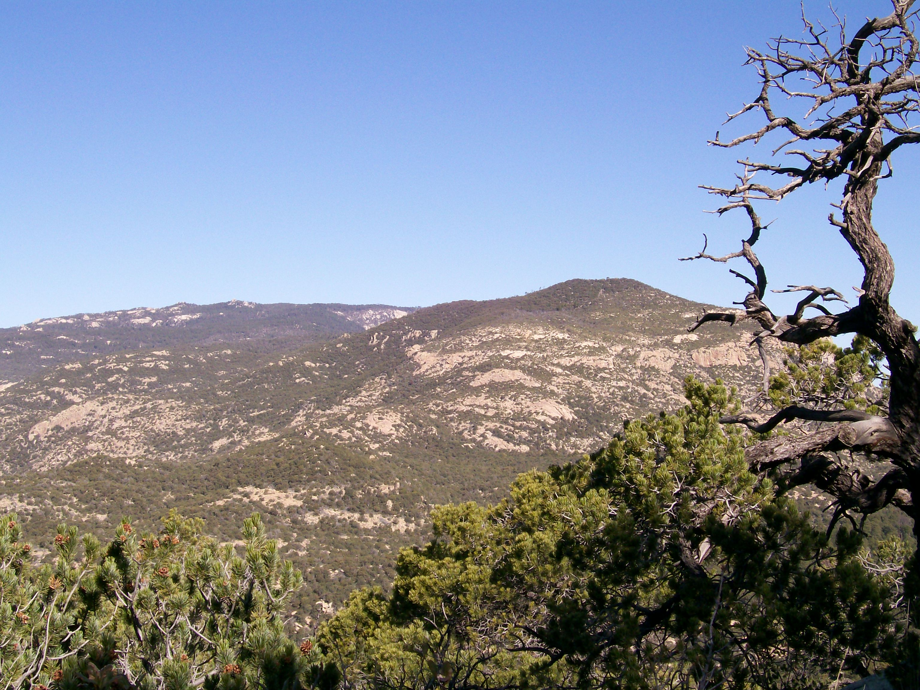 Looking toward Heartbreak Ridge from Rincon Peak area