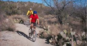 Two bicyclists on a dirt trail in a natural setting with cacti.
