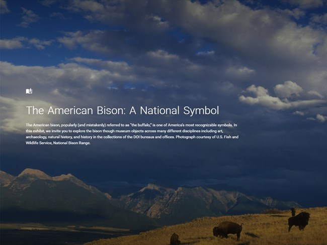 "Bison on an mountainous landscape with the title, ""The American Bison."""