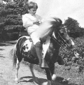 Quentin Roosevelt, the president's youngest son, rides his pony, Algonquin, around Sagamore Hill.