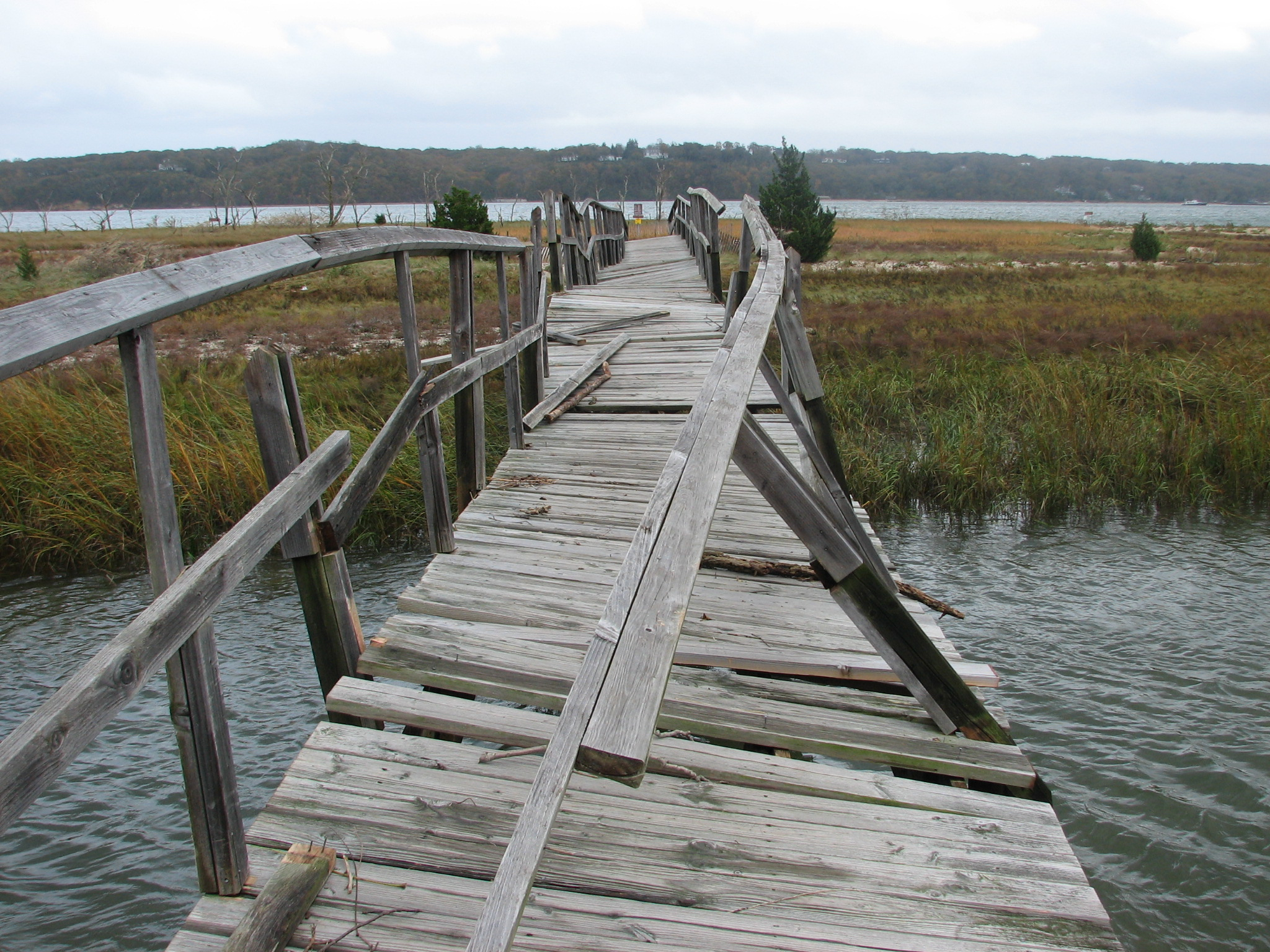 Boardwalk Damage