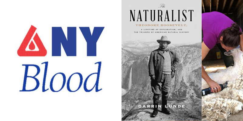 Images of the New York Blood Center logo, sheep being sheared, and the cover of a book with Theodore Roosevelt standing in the Yosemite Valley.
