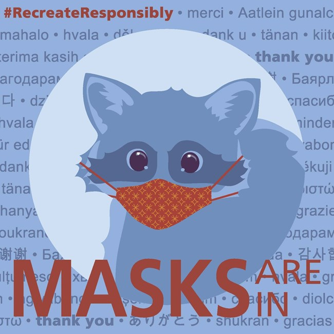 "Illustration of a raccoon wearing a face mask. Text reads ""#RecreateResonsibly; Masks Are In."""