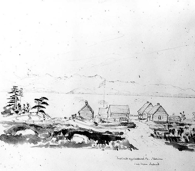 Belle Vue Sheep Farm as painted by James Madison Alden in 1858