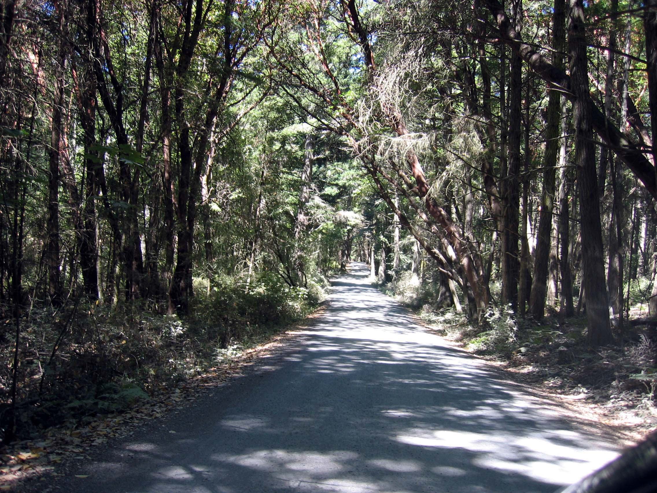 English Camp Entrance Road