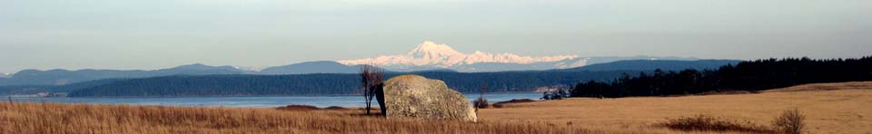 Mt. Baker from American Camp prairie