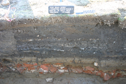 The layers of excavation, showing a clear layer of bricks.
