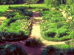 The garden has pathways dividing beds of flowering plants and herbs