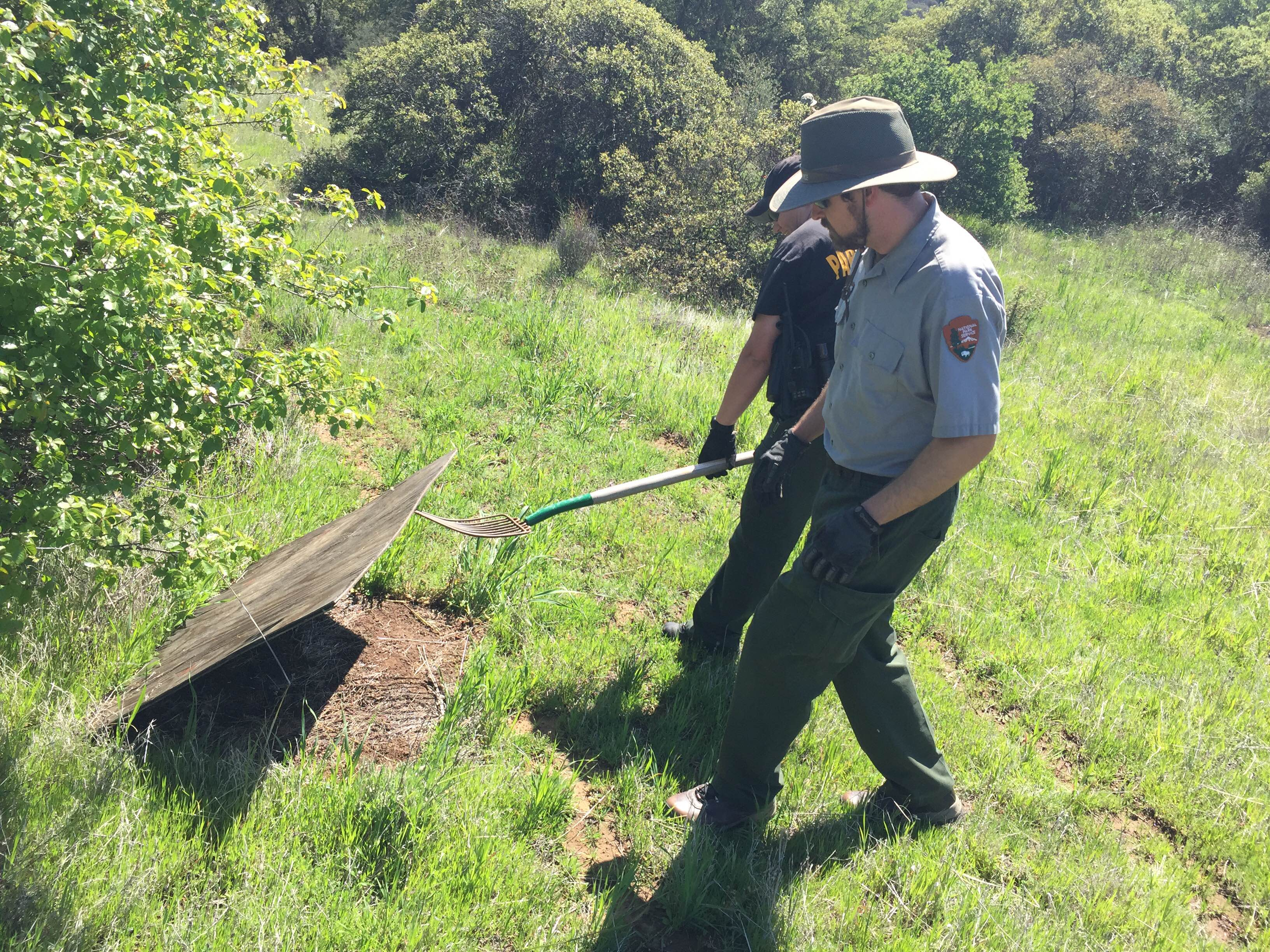 Rangers carefully lift a plywood board during a clean-up. (Photo: National Park Service)