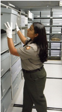 A ranger retrieves a collection for study at the park's museum.