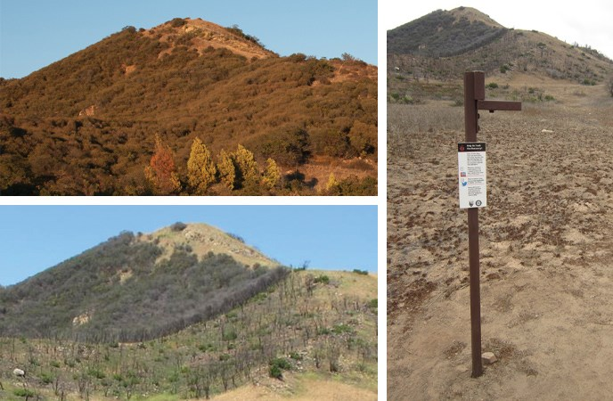 Two photographs show the change in vegetation before and after the Springs Fire. A third photo shows the camera stand.