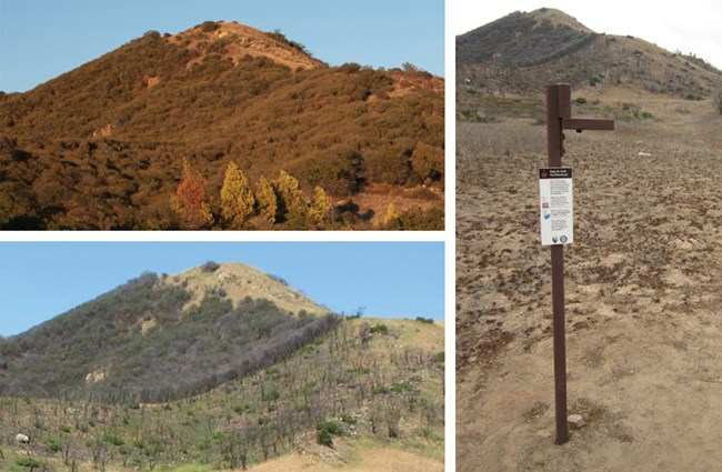 Two photographs show the vegetation before and after the Springs Fire. A third photo shows the photo stand.