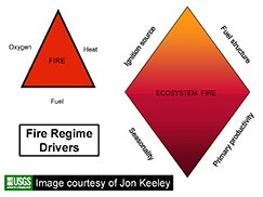 Fire regime drivers graphic - ecosystem fire composed of four elements: ignition source, fuel structure, seasonality, primary productivity.