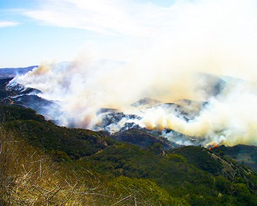 The 2006 Latigo Fire burns through chaparral in the Santa Monica Mountains.