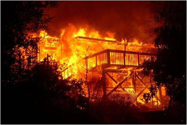 Why This Park Does Not Use Prescribed Fire Santa Monica