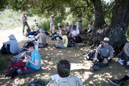 BBT hikers enjoy lunch under the shade of a large oak tree.