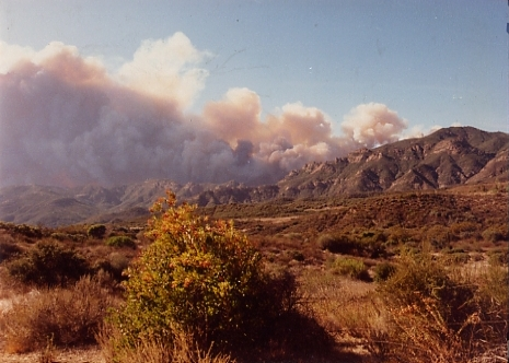 The 1993 Green Meadow Fire is being pushed south across the mountains on the way to the ocean.