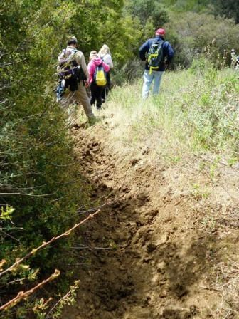 Trails become real muddy after the rain. Extra care must be taken when walking on them.