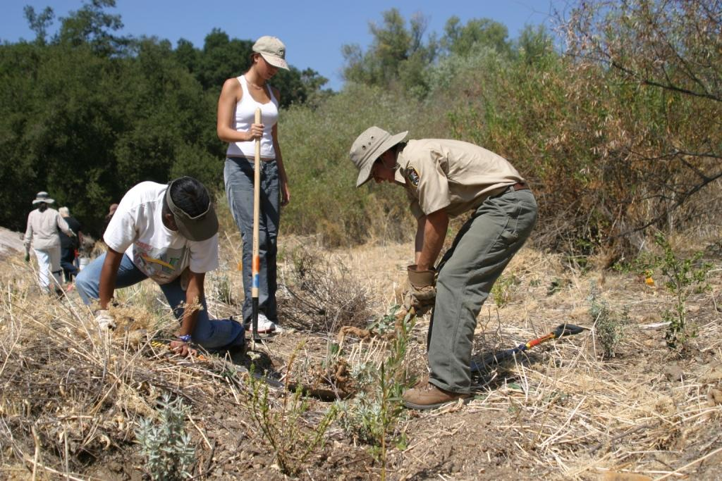 National Public Lands Day volunteers restoring parkland.