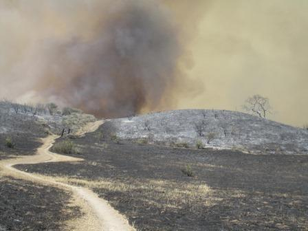 View of the Ranch Overlook Trail at Newbury Park's Rancho Sierra Vista, on the second day of the Springs Fire.