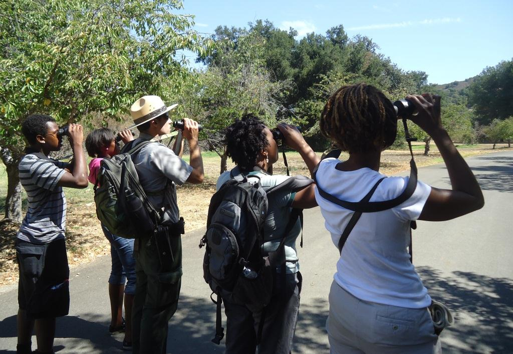 First-time visitors to the park look for bluebirds in the trees of King Gillette Ranch.