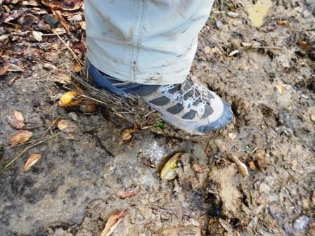 Muddy shoe on the Backbone Trail - Stephanie Shoemaker