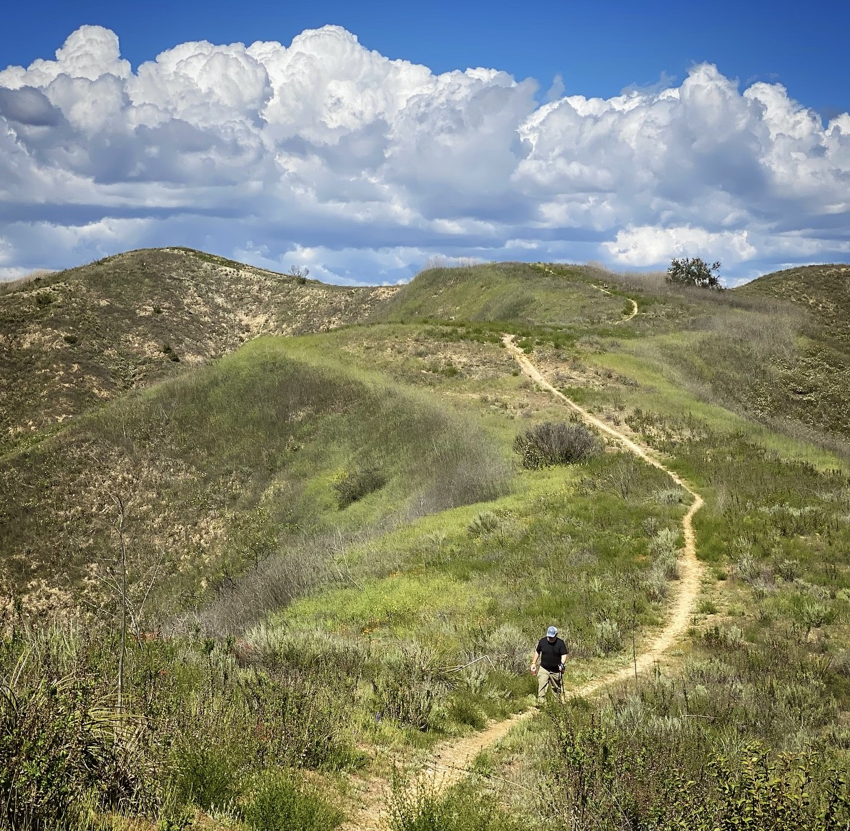 Hiker in Santa Monica Mountains