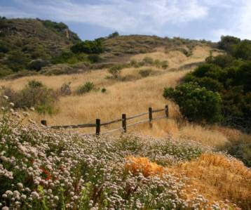 Wide landscapes lead to views of the many types of plant communities.