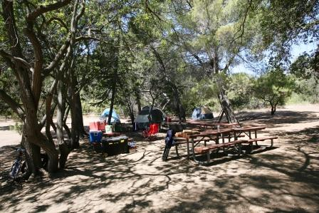 Tents and picnic tables are nestled among the trees in the Circle X Ranch Campground.
