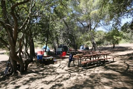 Tents And Picnic Tables Are Nestled Among The Trees In Circle X Ranch Campground
