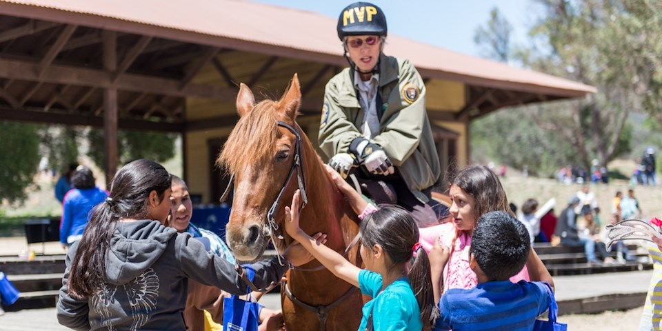 Children Play With A Horse While Talking To Mounted Volunteer Patrol Member