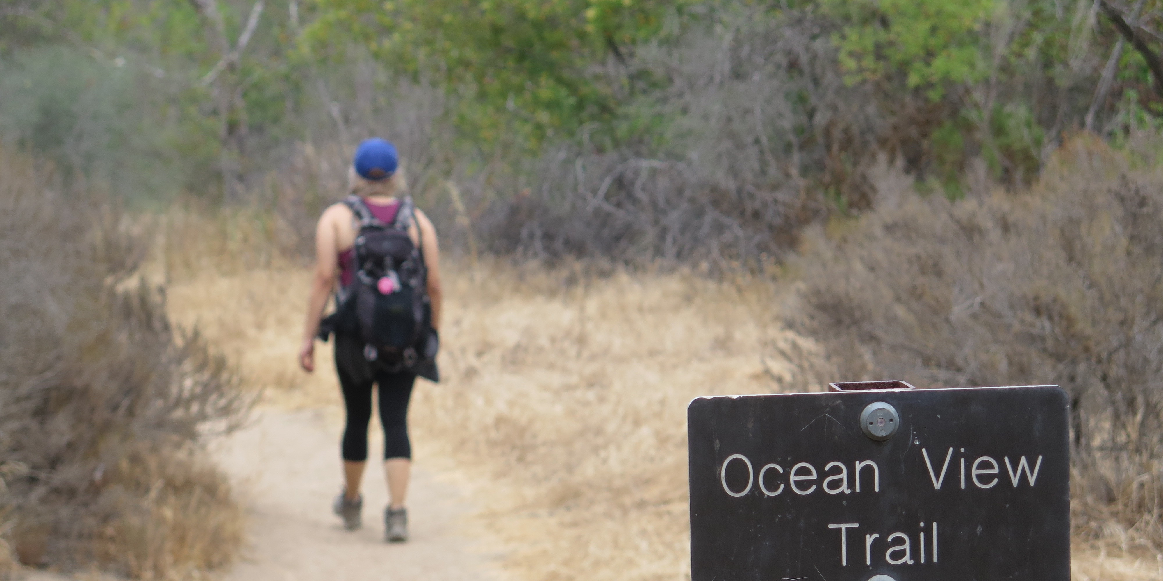 Ocean View Trail sign with hiker in the background