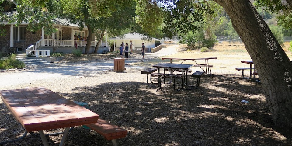 Picnic tables under shade of a large tree with people walking around the old ranch house in the background
