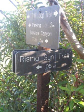 The trails in Solstice Canyon can lead you to a myriad different places and views
