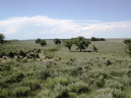 View of the Sand Creek Massacre site from Monument Hill in early summer.