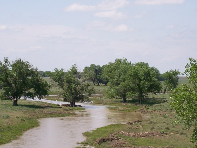 Water flowing down the usually dry bed of Sand Creek after heavy rains in 2007.