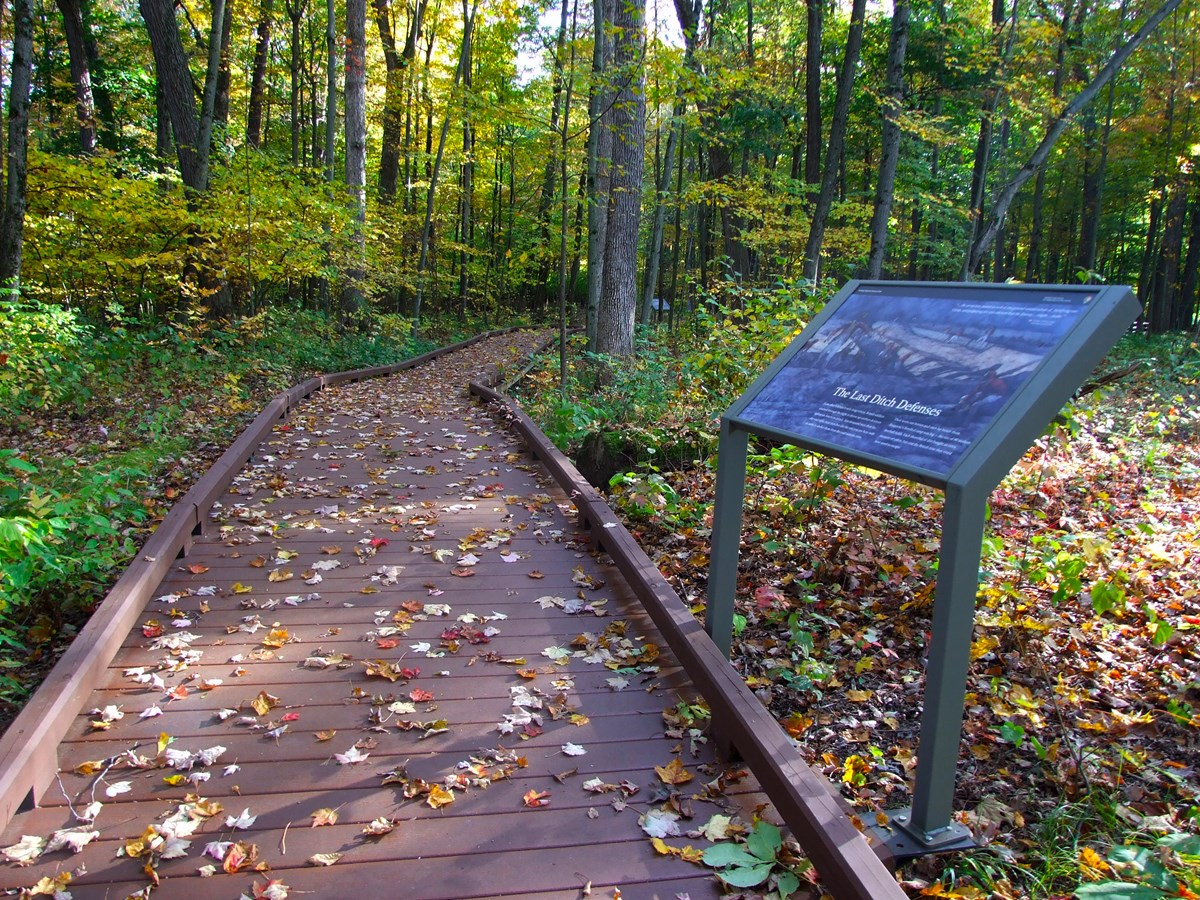 Boardwalk path through woods with wayside sign on right