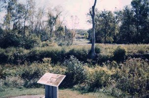 An interpretive sign describing the scene in the background.  The mixed field grass and woody-stem plants cover the ground where the Taylor Cabin stood.
