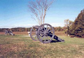 A detail image of an open field with some trees to the far right.  In the center of the view is a medium-sized cannon facing left.