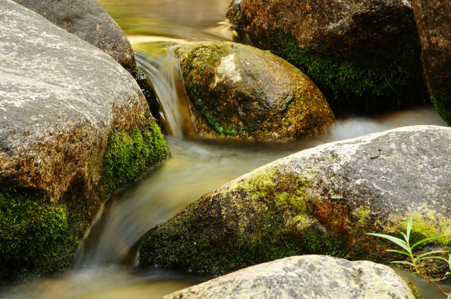 Water flows over rocks.