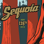 A colorful illustration of large trees with the Sequoia park name