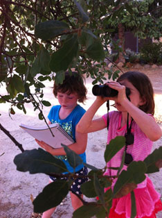 Phenology is for all ages!