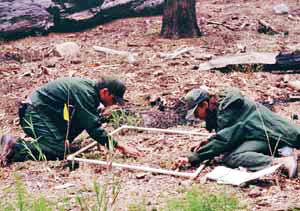 Two restoration workers count vegetation within a marked plot.