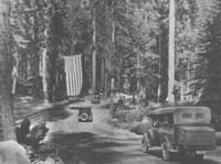 Early black and white photo shows ancient car on dirt road leading into the Giant Forest