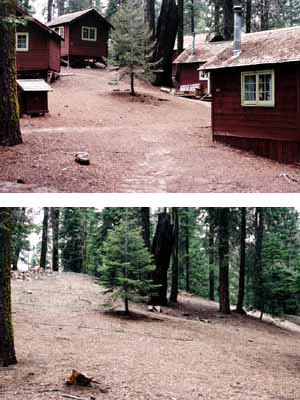 A restored zone (2004) in the former Lower Kaweah visitor rental cabin area.
